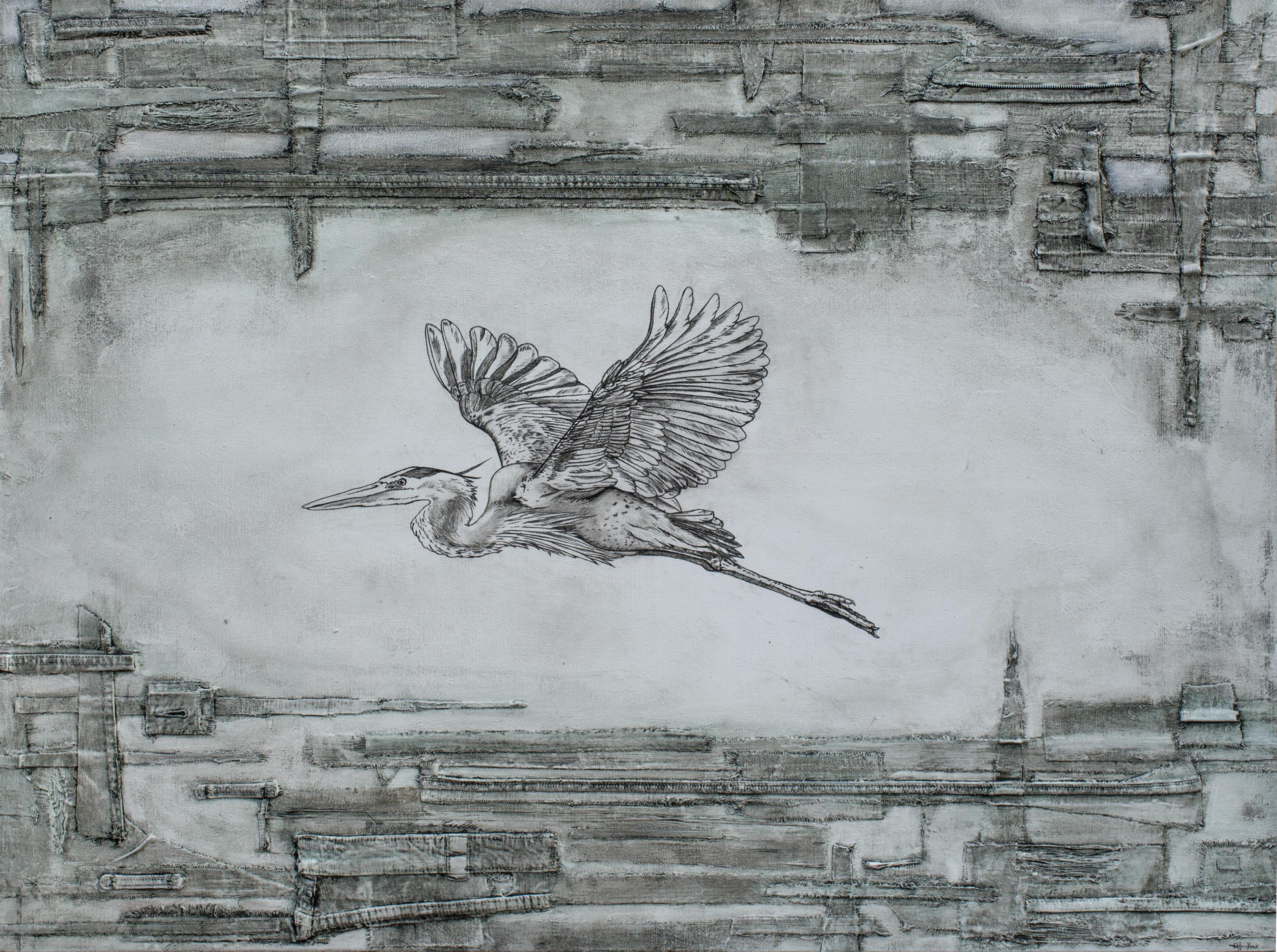 Blue Heron (Freedom) - Ardea herodias